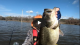 CALIFORNIA Pond Fishing for Monster Northern Strain Bass During Lockdown VIDEO