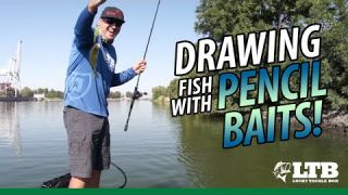 Tackle How-To: Drawing in Fish with a Pencil Bait #LTB #Yo-Zuri