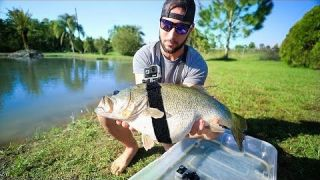 GOPRO Strapped On 12lb Largemouth BASS!!