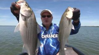 Lowrance Elite Ti to find Fish in Brush