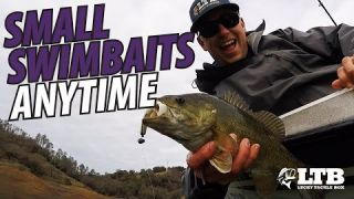 Tackle How-To | Fishing Small Swimbaits Anytime! #LTB
