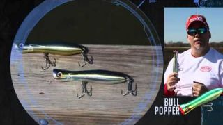 Yo-Zuri Bull Popper with Mark Davis