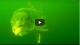 Lake trout underwater bites strikes and follows  VIDEO