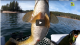 Smallmouth Bass Fishing FISH OF MYSTERY & MAGIC Angling Ca VIDEO