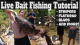 How To Catch Fish In Rivers: Live Bait Fishing Tutorial VIDEO