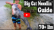 Caught A 70+ Pound Catfish With Bare Hands VIDEO