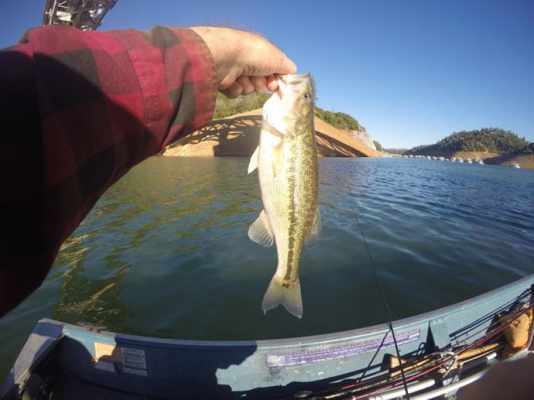 Lake Oroville Fishing Report | June 27 - Launched about 5:30am at Lime Saddle, stopped fishing at 10am. Felt good being back after shipping last week during the heat wave. Couldn't bring my self to fish when that hot