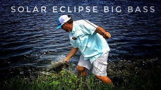 Solar Eclipse Bass Fishing - Monster Bass Wading in a Pond