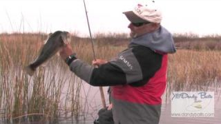 Spinnerbait Tips and Tricks with Bobby Barrack