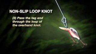 Knot How-to: Non-Slip Loop Knot - SpiderWire