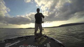 Justin Lucas Catching Big Bass on the Berkley Slim Shad Swimbait