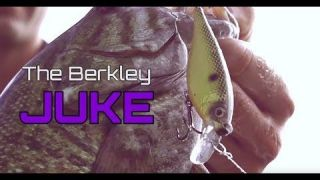 The NEW Berkley® Juke | Its Coming