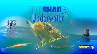 Underwater Viewpoint: Opti Shad in Real Conditions