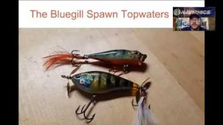Navionics Webinar | Post Spawn Bass Tricks with Tyler Brinks