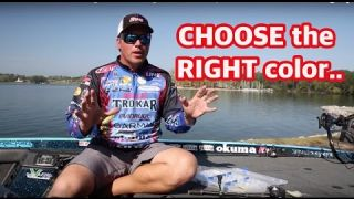 Tackle How-To: Choosing Lure Colors - Right colors for the right situation that help catch bass