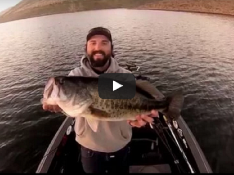 Melones Madness Swimbait Edition (VIDEO) - New Melones Lake  Swimbait Edition (VIDEO)