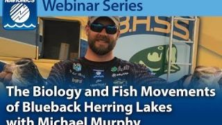 Navionics Webinar | The Biology and Fish Movements of Blueback Herring Lakes