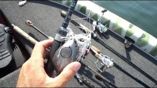 Fishing Rod Arsenal | The Workhorse