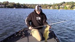 Cody Meyer: The End of the Backlash with Daiwa
