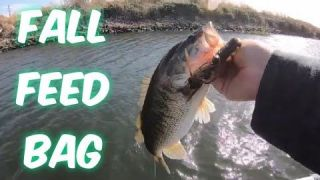 Ca Delta Bass Fishing.(Fall Feed Bag)