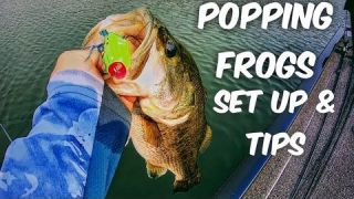 POPPING FROGS SET UP & TIPS