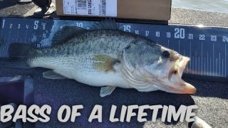 CA DELTA BASS FISHING.(Bass Of A Lifetime)