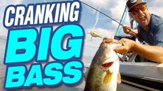 Crankbait How-To: Fish Retrieve, Rigging and Location with  Lucky Tackle Box Tips