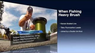 Underwater Viewpoint | Lines for Fishinng Heavy Brush #Seaguar
