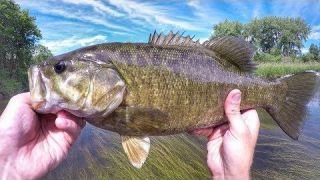 Whopper Plopper Smallies