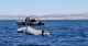 Two people were ejected into Lake Havasu after a boating collision