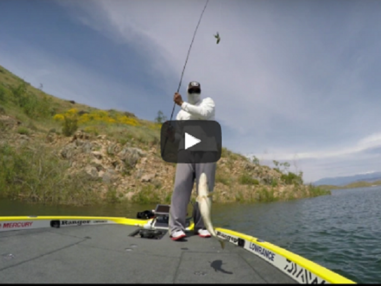 the west's biggest bass fishing forum | westernbass, Fishing Rod