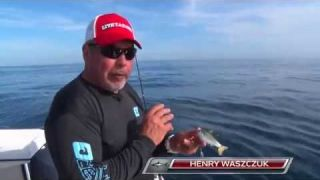 Jigging the LiveTarget Swimabait Series in deep water