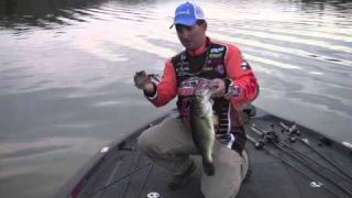 The difference in buzzbait sound | IMA Buzzbait with Paul Mueller