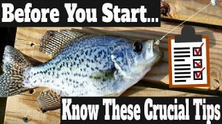 Crappie Fishing Secrets 2020: