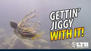 Tackle How-To: Shallow Water Jig Fishing  #LTB