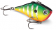 Custom Color Rippin' Raps from Rapala