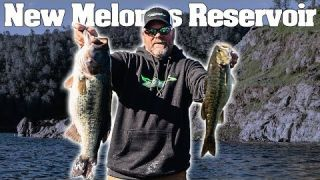 Monster Bass at Melones WWBT