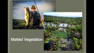 Navionics Webinar: Finding Bass in the Grass with Josh Douglas and Seth Feider #lowrance