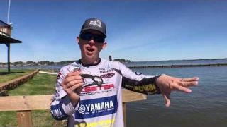 Fishing buzzbaits for big PRE-SPAWN bass VIDEO
