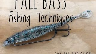 Rigging, Secrets and Mods for Fishing Flukes in the Fall with Ike VIDEO