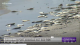 Thousands of dead fish washed up in Texas