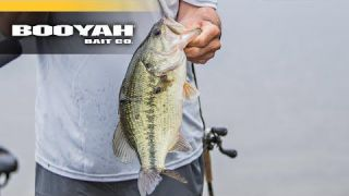 2 Most Popular Spinnerbait Blade Combos for Retrieve/Conditions