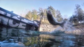 The magic of catching bass off docks with Lowrance Pro Jimmy Reese for bass
