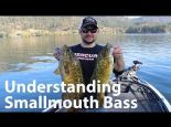 Understanding Smallmouth Bass