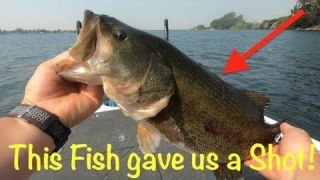 How we caught fish and how we won by an 8lb margin