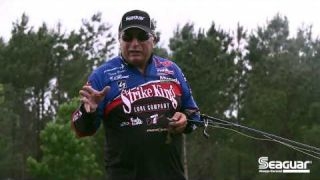 Seaguar How-To: Bait Awareness when Flipping to Increase Your Catch Ratio