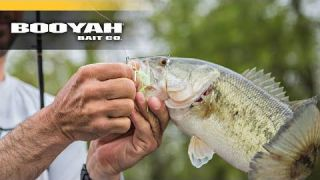 Spinnerbaits vs. Swim Jigs VIDEO