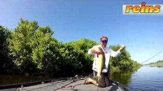 Reins Punch Shot Flipping BIG BASS