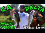 Multi-Species Day on the California Delta ft. Bearded Bassin