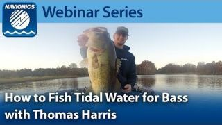 Navionics Webinar | Fishing for Bass in Tidal Waters with Thomas Harris